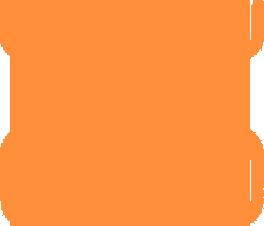 Zirconia Bridges
